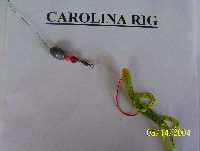 bass fishing for beginners carolins rig