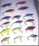 Variety of lipless crankbaits