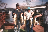 Almost all of these bass were released back into the lake.
