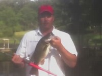 ESOX Bass Fishing Rods