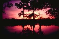 Beautiful Bisteneau Sunset