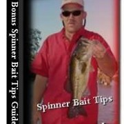 All About Spinnerbaits Ebook