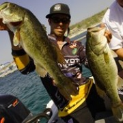 Iaconelli's Not Panicking - BASS Communications