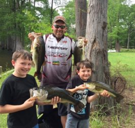 Which Dobyns rod to use bank bass fishing