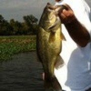 Red River Louisiana Bass