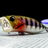 Duo Realis Popper