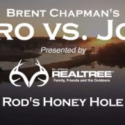 Pro vs. Joe