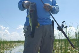 Hot Weather Bass Fishing