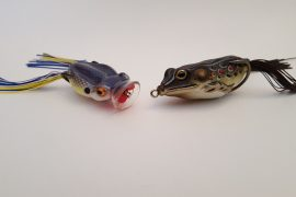 Fishing with Hollow Body Frogs