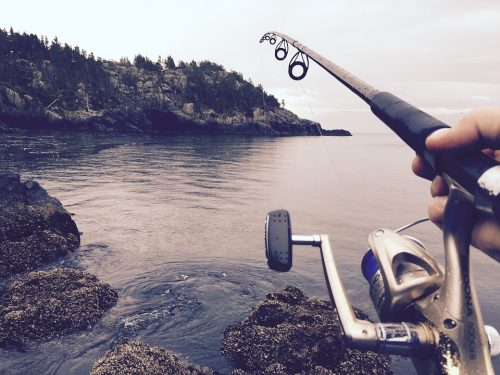 Beginners Guide to Spinning Reels